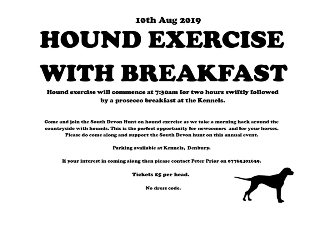 hound exercise